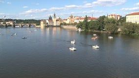 Turismo de Pedalo en el río de Moldava, Praga almacen de metraje de vídeo