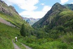 Turismo della bici di montagna Fotografia Stock