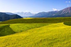 Turismo della Cina Qinghai Fotografie Stock
