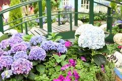 Turismo della cupola del fiore di Singapore fotografia stock libera da diritti