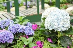 Turismo della cupola del fiore di Singapore fotografie stock