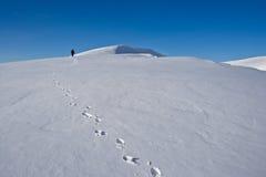 Turismo do inverno nos Carpathians Fotos de Stock Royalty Free