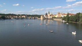Turismo en el enfoque-hacia fuera del río de Moldava, Praga de Pedalo metrajes
