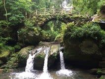 Turismo Luxemburgo Suiza Puente de madera viejo sobre corriente de la montaña en el bosque protegido, vegetación inusual, diversa imagen de archivo