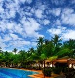 turismo Palme contro un cielo blu fotografie stock