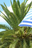 Turismo tropicale Immagini Stock