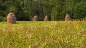 Turismo verde Henar con los pajares en día de verano soleado hayfield pajares en un pequeño campo cerca del bosque almacen de video