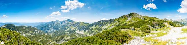 Turist- bana i Slovenien berg nära Vogel Bana av överkanten av berget, grönt gräs, lock, blå himmel fotvandra i Europa Triglav na Arkivbild