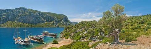 Turist- fartyg på en ö med den gamla olivträdet Royaltyfri Bild