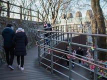 Turist- gå på banan av det Namsan tornet parkerar arkivfoton
