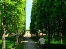 Turist- gå till och med Drottningholm trädgårdar, Sverige royaltyfria bilder