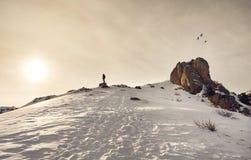 Turist i bergen royaltyfri bild