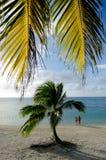 Turist- kock Islands för besökAitutaki lagun Arkivfoto