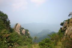 Turist- landskap, berg och vatten, träd, växter, blommor och stenar arkivbilder