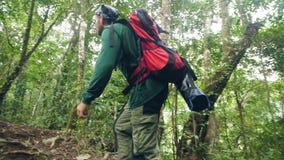 Turist- man som går på bana i djungelskog medan fotvandra för sommar Fotvandrare som reser i lös rainforestturism arkivfilmer