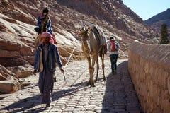 Turist och kamel Royaltyfri Bild