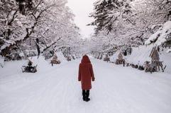 Turist på den Hirosaki slotten i vintersäsong, Aomori, Tohoku, Jap arkivbild