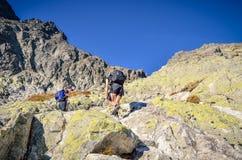 Turist på en bergslinga Royaltyfria Bilder