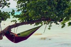 Turist på en hängmatta som hänger från ett träd arkivfoto