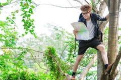 Turist på tree Royaltyfri Foto