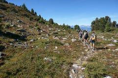 Turist som går i trekking slinga med härlig sikt Royaltyfri Fotografi