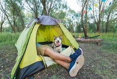 Turist som ligger i tält med hunden som campar i höstnatur Royaltyfri Foto