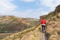 Turist som trekking på tydlig slinga i Golden GateSkotska högländerna nationalpark, Sydafrika Sceniska tabellberg, kanjoner och c royaltyfria foton