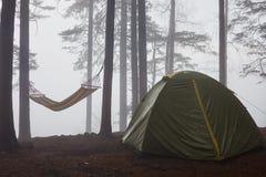Turist- tält och hängmatta i dimman i skogen royaltyfria bilder