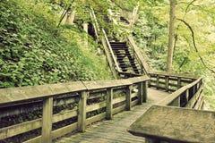 Turist- trail till Brandwine Falls Royaltyfria Bilder