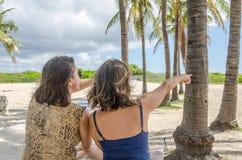 Turist- tyckande om Miami Beach med palmträd Arkivbilder