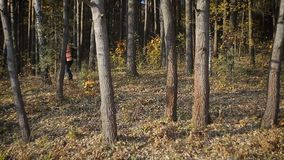 Turista alegre del hombre que salta en el bosque almacen de metraje de vídeo
