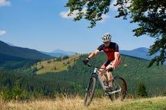 Turista atlético joven en la ropa de deportes que completa un ciclo una bici en alta hierba bajo rama de árbol verde grande fotografía de archivo