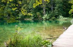 Turista che cammina lungo un percorso d'escursione attraverso il lago Fotografia Stock