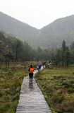 Turista che cammina nel quadro di comando dell'allerta Fotografia Stock Libera da Diritti