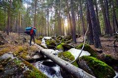 Turista con la mochila en el bosque Imagenes de archivo