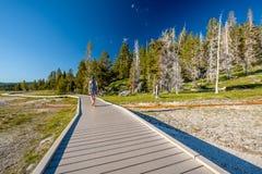 Turista con lo zaino che fa un'escursione in Yellowstone Fotografia Stock