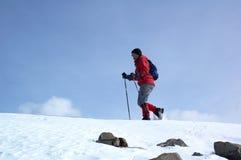 Turista de la montaña en cuesta de la nieve Fotos de archivo