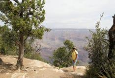 Turista del grande canyon Fotografie Stock Libere da Diritti