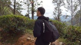 Turista del hombre joven con la mochila que camina en el rastro en montañas con paisaje hermoso de la naturaleza en el fondo Cami almacen de video