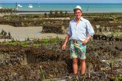 Turista dell'ostrica Immagini Stock Libere da Diritti