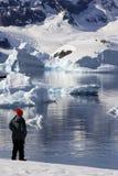 Turista di avventura - penisola antartica - l'Antartide Fotografia Stock Libera da Diritti