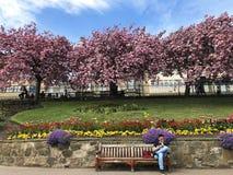 Turista di principi Street Gardens Fotografie Stock Libere da Diritti