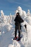 Turista do inverno imagem de stock royalty free