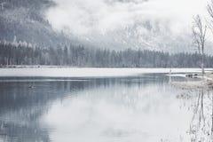 Turista en el lago de la montaña del invierno Imagen de archivo