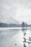 Turista en el lago de la montaña del invierno Fotos de archivo