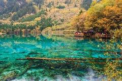 Turista en el paisaje de Jiuzhaigou Fotos de archivo libres de regalías