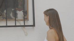 Turista fêmea atrativo novo que joga com o gato na janela na rua filme
