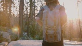 Turista femenino emocionado de la visión trasera con la mochila que disfruta de puesta del sol asombrosa en el bosque Rock Creek, almacen de video