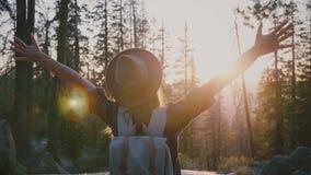 Turista femenino emocionado de la visión trasera con la mochila que goza sorprendiendo puesta del sol con los brazos abiertos de  almacen de metraje de vídeo