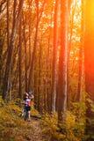 Turista femenino y bicicleta que disfrutan de la visión de madera desde la trayectoria Imágenes de archivo libres de regalías